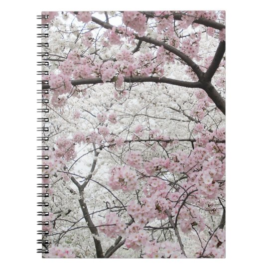 Cherry Blossoms 10 Notebook