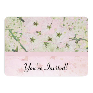 Cherry Blossoms 1 Card