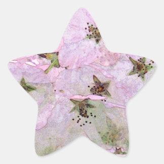 Cherry Blossoms 2 Pink Star Sticker