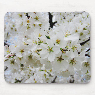Cherry Blossoms 3 Mouse Pad