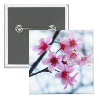 Cherry Blossoms - A Pinback Buttons