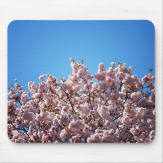 Cherry Blossoms Against The Sky Mouse Pad