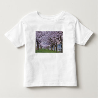 Cherry blossoms along Willamette river, USA Toddler T-shirt