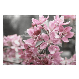 Cherry Blossoms American MoJo Placemat Cloth Placemat