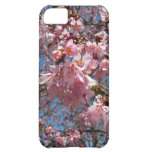 Cherry Blossoms and Bee Pink Spring Floral Case For iPhone 5C