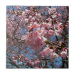 Cherry Blossoms and Bee Pink Spring Floral Ceramic Tile