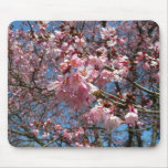 Cherry Blossoms and Bee Pink Spring Floral Mouse Pad