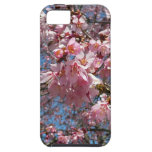 Cherry Blossoms and Bee Tough Iphone 5 Cover