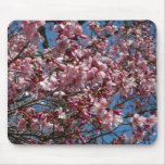 Cherry Blossoms and Blue Sky Spring Floral Mouse Pad