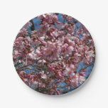 Cherry Blossoms and Blue Sky Spring Floral Paper Plate
