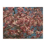 Cherry Blossoms and Blue Sky Spring Floral Wood Wall Art