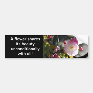 Cherry Blossoms and meaning Bumper Sticker