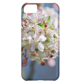 Cherry Blossoms and meaning iPhone 5C Case