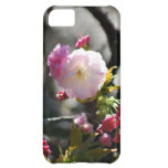 Cherry Blossoms and meaning iPhone 5C Cases