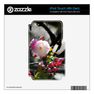 Cherry Blossoms and meaning iPod Touch 4G Skin