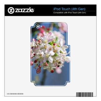 Cherry Blossoms and meaning Skin For iPod Touch 4G