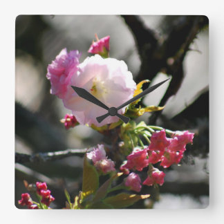 Cherry Blossoms and meaning Square Wall Clock