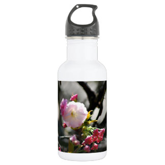 Cherry Blossoms and meaning Water Bottle
