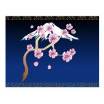 Cherry Blossoms and Mt Fuji  Postcard