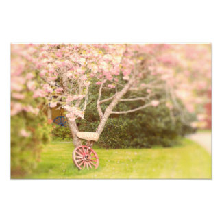 Cherry Blossoms and Old Wagon Wheel Photograph