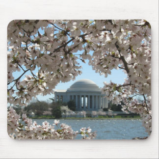 Cherry Blossoms and the Jefferson Memorial Mouse Pad