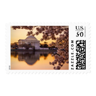 Cherry Blossoms And The Jefferson Memorial Postage
