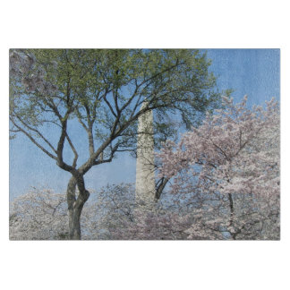 Cherry Blossoms and the Washington Monument Cutting Boards