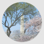 Cherry Blossoms and the Washington Monument in DC Classic Round Sticker