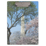 Cherry Blossoms and the Washington Monument in DC Clipboard
