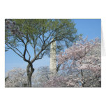 Cherry Blossoms and the Washington Monument in DC Greeting Card