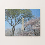 Cherry Blossoms and the Washington Monument in DC Jigsaw Puzzle