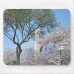 Cherry Blossoms and the Washington Monument in DC Mouse Pad