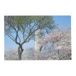 Cherry Blossoms and the Washington Monument in DC Placemat
