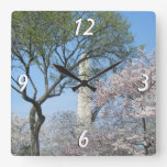 Cherry Blossoms and the Washington Monument in DC Square Wall Clock