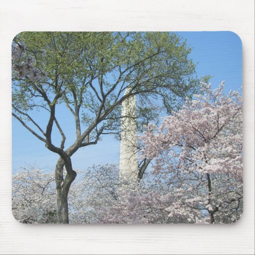 Cherry Blossoms and Washington Monument Mousepad