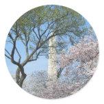 Cherry Blossoms and Washington Monument Sticker