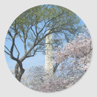 Cherry Blossoms and Washington Monument Sticker