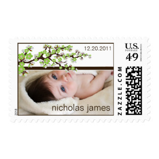 Cherry Blossoms Baby Announcement Stamp (green)