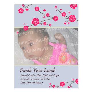 Cherry Blossoms Birth Announcement Postcard