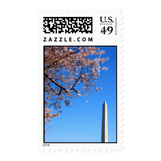 Cherry Blossoms Bring Spring to DC Stamp
