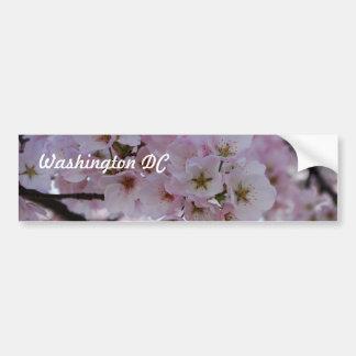 Cherry Blossoms Car Bumper Sticker