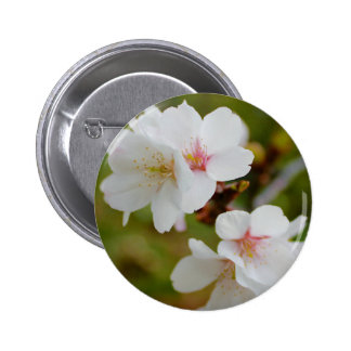 Cherry blossoms pins