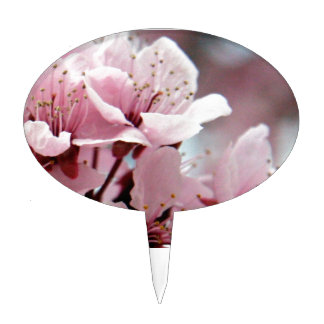 Cherry Blossoms Cake Topper