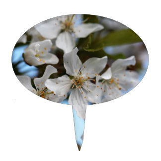 Cherry blossoms cake topper