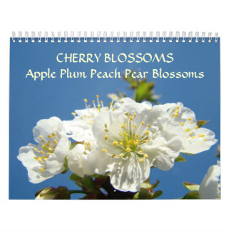 CHERRY BLOSSOMS Calendar Apple Blossom Pear Peach