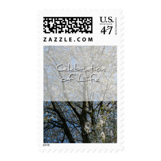 Cherry Blossoms Celebration of Life Postage