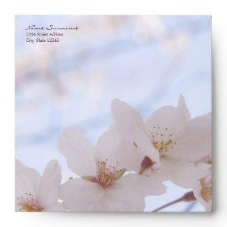 Cherry Blossoms Custom Envelope