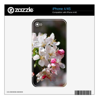 Cherry blossoms decal for iPhone 4