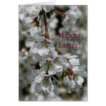 Cherry Blossoms Easter Card