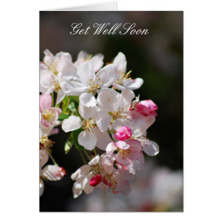 Cherry blossoms Get Well Soon Card
